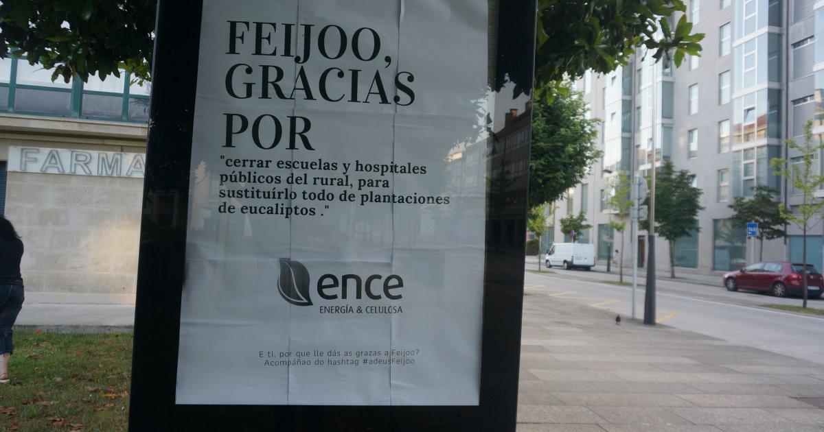 El eucalipto devalúa al monte gallego un 112% - Xornal Galicia