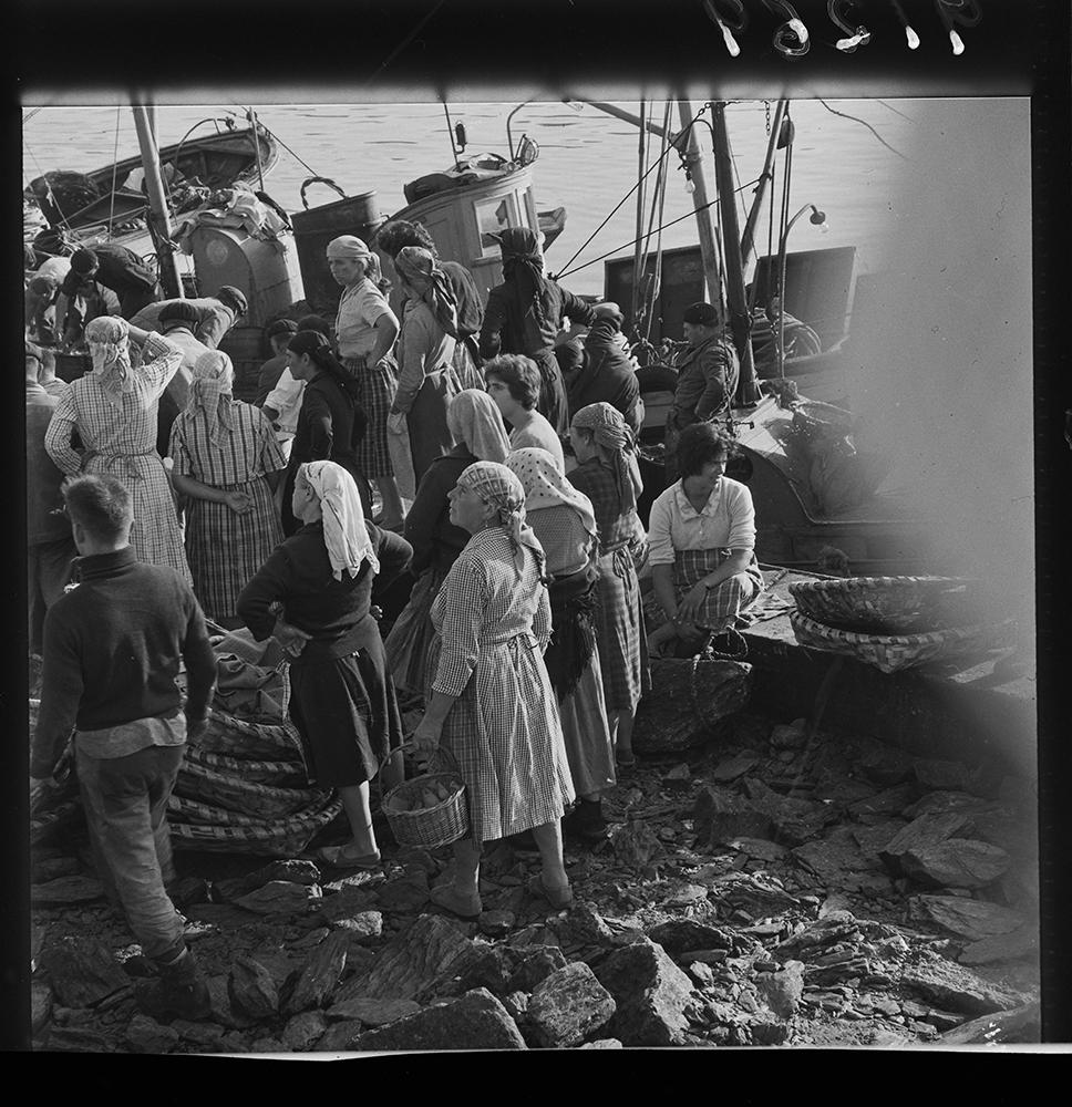 Descarga de peixe en Portonovo. 1963. Arquivo Pando