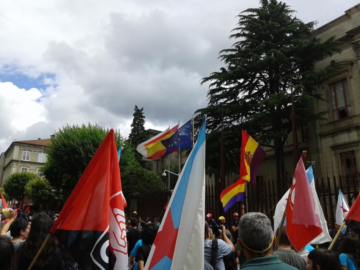 Pluralidade de bandeiras nunha manifestación