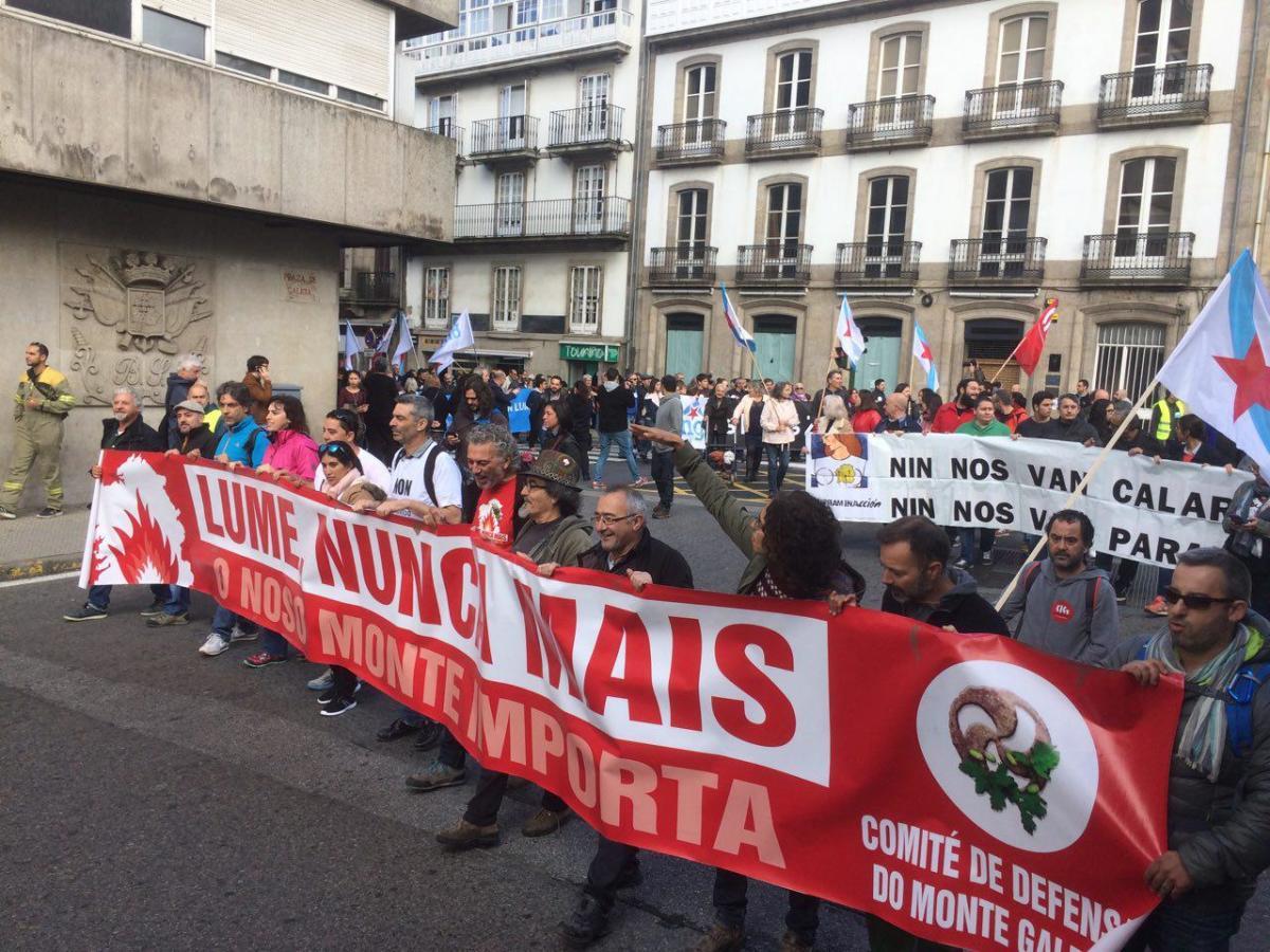 """Á protesta contra a Lei de Depredación uniuse o berro de """"Lumes Nunca Máis"""""""