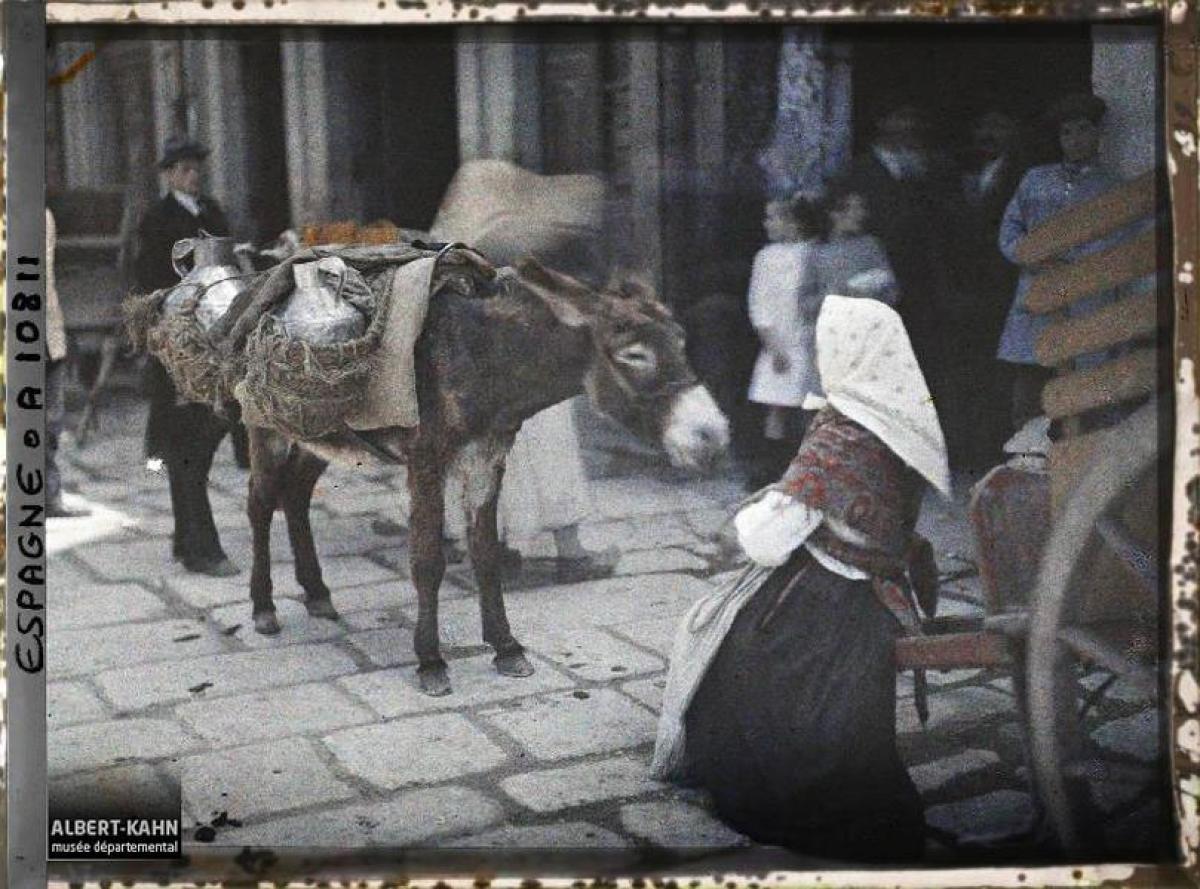 Leiteira e asno na Coruña (1917)